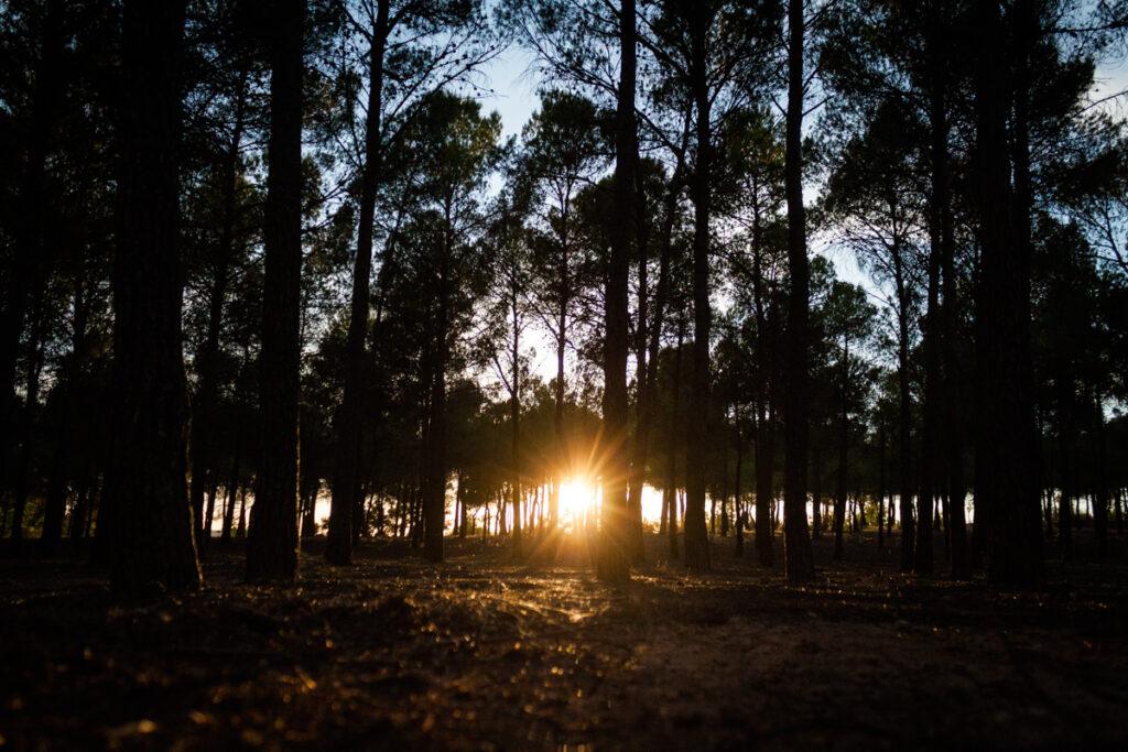 0619_IsaMilan_Paraje-del-Santuario-de-Belen_WEB.JPG