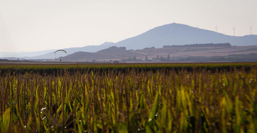 0916_BelenMilan_Entre-Maizales_Camino-Los-Pandos_WEB-1.JPG